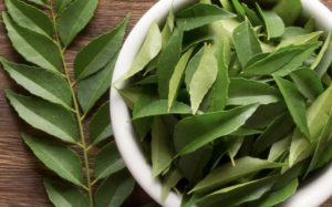 Benefits Of Curry Leaves