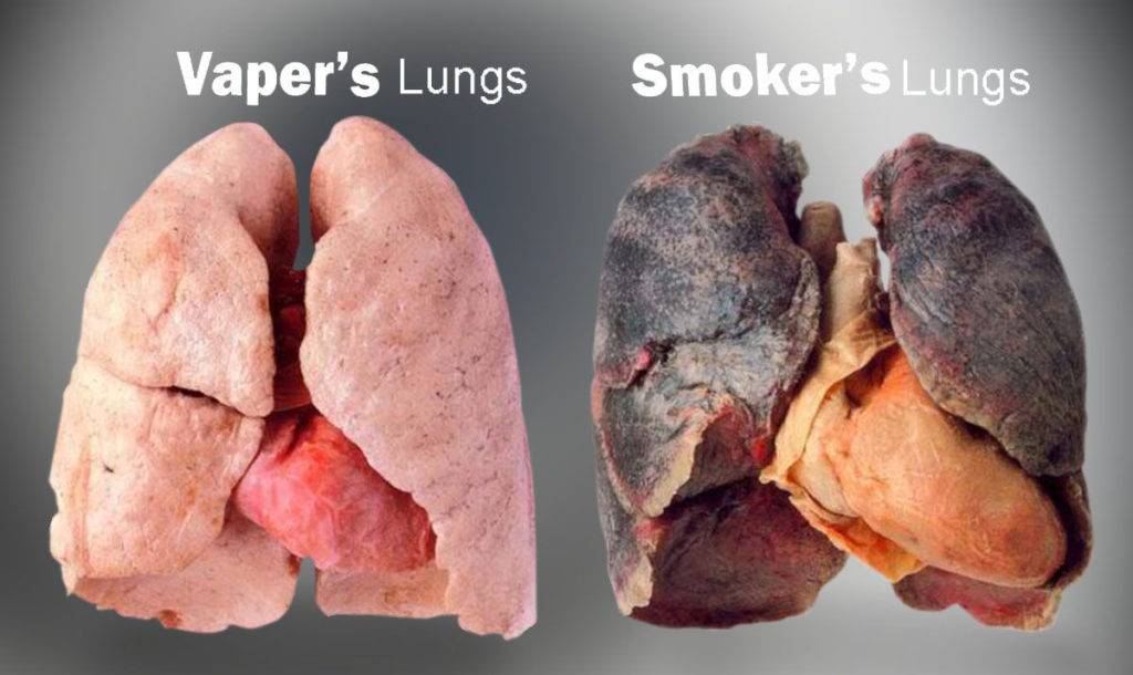 Foods Used To Clean The Burnt Lung Due To Smoking